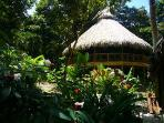 View of Ceiba Tree Lodge from gardens
