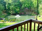 Your view from Chris's Cabins back deck!