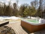 four season hot tub