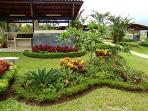 Wonderful Landscaping