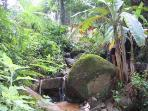 Cascading stream and small waterfall beside villa