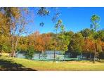 Cherokee Village tennis courts...bring your rackets!