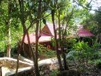 Treetops is a cozy bungalow nestled into the lush woods abutting the National Park