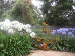 Bungunyah's Garden