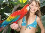 Entertainment for Kids - Ocean World