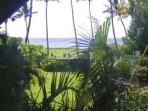 View from #214 lanai
