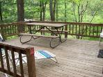 Picnic Table on Back Deck