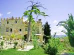 Apartment Rental in Tuscany, San Polo - Tenuta Santa Caterina - Cardinale