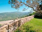 Villa Within Walking Distance of Cortona  - Villa Cortona