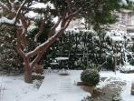 Suite Surah Snow in garden