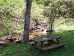 Picnic Table beside Creek