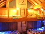 Four adult bunks with light and storage