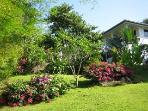 garden 2010