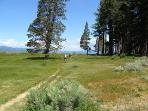 Our neighborhood open space where we love to walk and hike by our South Lake Tahoe Vacation Rental
