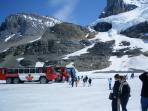 Visit the Columbia Ice Fields & Interpretive Centre. 2.5 hr Drive from Lodge