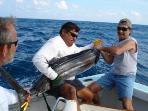 Deep sea fishing --Isla Mujeres is some of the best sail fishing in the world
