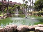 Exhotic Gardens