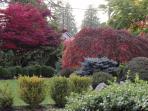 Front garden in autumn colours