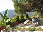 pino private tropical garden with sun loungers