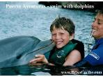 Puerto Aventuras swim with dolphins
