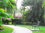 Maui Banyan Resort grounds