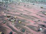 Iron sands on Nile Mile Beach