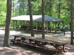 pic nic at Unicoi