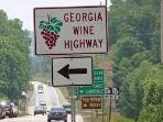 Travel The GA Wine Hwy