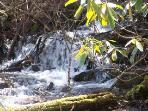 Water Fall by hiking trail
