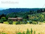 House in between the vineyards Tuscany