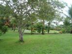 Front garden Jodokus Inn 2013