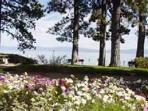 Tahoe Park Beach Club