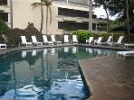 Large Swimming pool available for our Guest