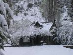 The Cherry tree house in winter