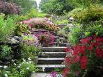 17. More garden steps