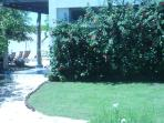 View from Garden Depandance