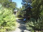 Huntingdon Beach Nature Path
