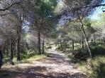 Lovely walks in the mountains behind Mijas - walkable distance from the flat