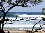 Playa Negra surf break - 1 min walk
