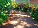 dappled Kuleana pathways invite discovery