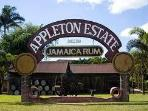 Appleton Estates Rum Tour