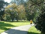 GG Park.10 min walk or jog  from us.