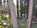 Hammock village, enjoy, relax, reflect!