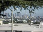 Downtown L.A. view