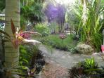 Private Tropical Garden Surrounding The House
