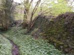 Footpath with medevil walls right by Tintern Abbey Cottage cottage
