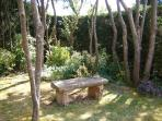 A shady spot in the garden at the rear