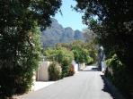 View up street to Table Mountain