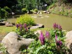 Rock gardens surround our fishing pond and attract butterflies and honey bees.