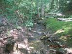 Backyard creek and hiking trail into our private woods.